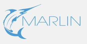 Marlin Web Design